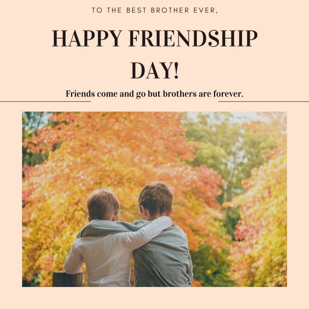 Friendship day quotes for brother